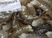 HEAD LESS SHRIMP 500g