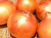 Onion-150-200